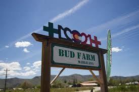 Bud Farm Front.jpg