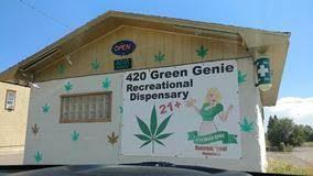 green genie 2.jpg